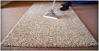 Rugs Mats Cleaning Services